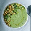 Fresh Green Corn Soup